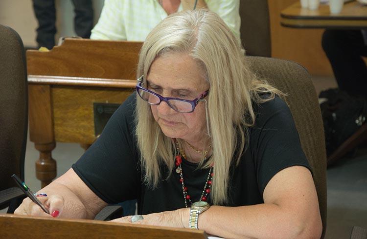 (Julia Arenas, propietaria de la escuela del Sur y concejal de la Alianza Cambiemos PRO-UCR)